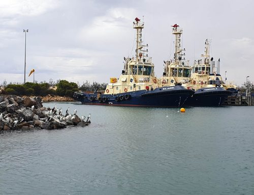 Geraldton Port Annual Sediment Compliance Monitoring