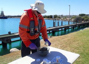 Person collecting core sediment samples